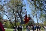 Kreatywni w Kielcach dali w niedzielę wspaniały popis w Parku Miejskim w Kielcach! Był taniec w powietrzu i inne cuda [ZDJĘCIA]