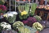 Gniezno. Na targowisko przybyła jesień. Można już kupić wiązanki i kwiaty na Wszystkich Świętych! [FOTO]