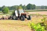 Krotoszyn - odszkodowania dla rolników za straty z powodu strat w uprawach ozimych