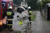 Strażacy znów interweniowali. Tym razem dwukrotnie wzywano ich do owadów błonkoskrzydłych [ZDJĘCIA]