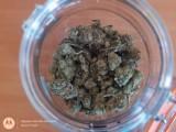 Złotów. Policjanci zabezpieczyli 70 gramów narkotyków