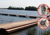 Wandale niszczą gminne kąpielisko w Kolbudach. Zniszczona przebieralnia, gwoździe w wodzie