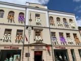 Miśki w oknach w kamienicy w centrum Kielc. Niezwykła akcja w ramach Budzenia Sienkiewki [ZDJĘCIA, WIDEO]