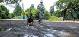 Mieszkańcy niektórych bydgoskich osiedli tęsknią  bardziej za asfaltem niż za zielenią