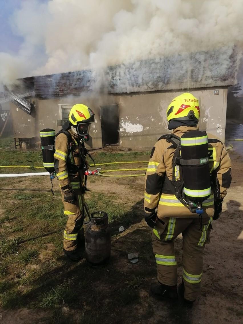 Pożar budynku mieszkalnego w Sobowidzu gm. Trąbki Wielkie. Ewakuowano mieszkańców, na miejscu 10 zastępów straży  ZDJĘCIA