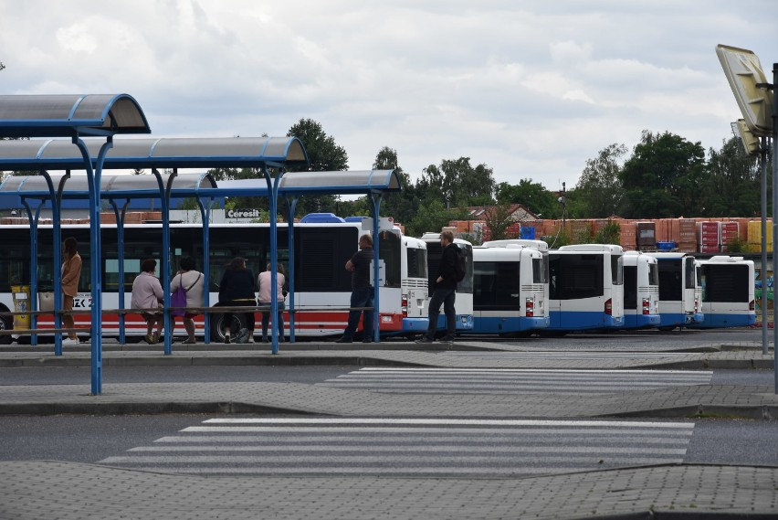 25cfdf7cbabbb3 Pasażerowie Komunikacji Miejskiej w Rybniku kupują bilety za pomocą  aplikacji mobilnej mPay