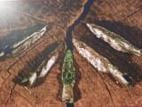 Lubuskie Pompeje leżą niecałe 100 km od Świebodzina. Warto się przygotować i wybrać na spacer pełen przygód