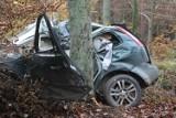 Znamy szczegóły wypadku na trasie Chachalnia-Chwaliszew [ZDJĘCIA]