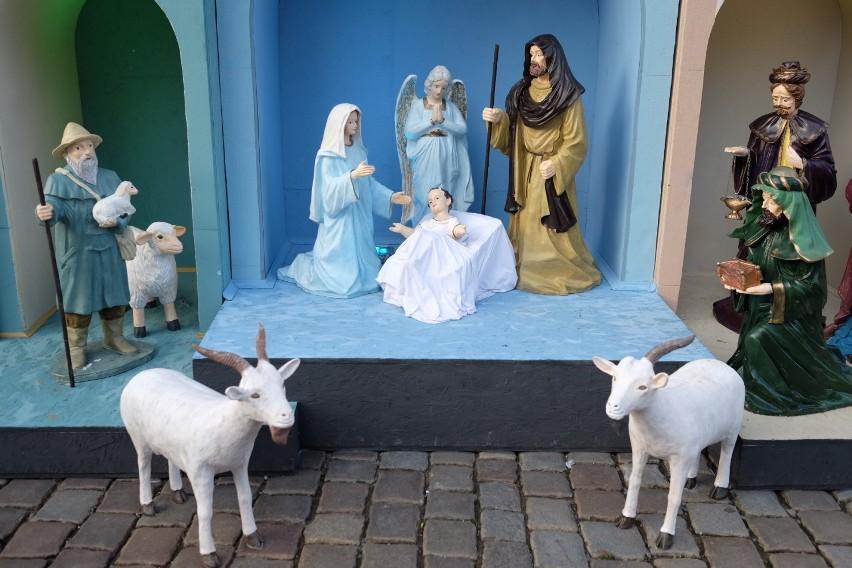 Szopki bożonarodzeniowe w poznańskich kościołach