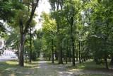 Jak może zmienić się Park Staromiejski w Żorach? Wróci fontanna z Jasiem i Małgosią? [ZDJĘCIA dawniej i dziś]