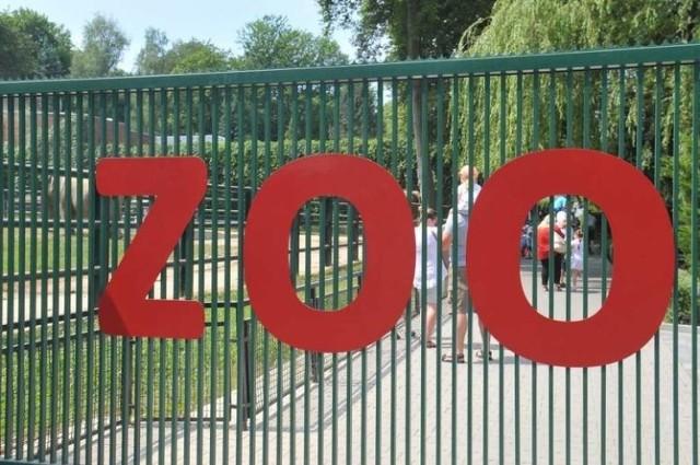 Krakowskie zoo ma nowego dyrektora oraz dwóch wicedyrektorów