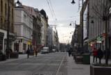 Drzewa na rynku i 3 Maja w Katowicach zostaną wymienione. Trzy firmy ubiegają kontrakt
