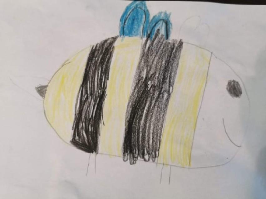 Światowy Dzień Pszczół w szkole w Różynach. Zdalnie o pożytecznych pszczołach  ZDJĘCIA