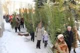 Procesja w śniegu. Pamiętacie taką Niedzielę Palmową w Pile? [ZOBACZ ZDJĘCIA]
