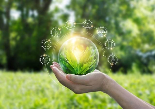 Ekologiczne życie to troska o całe naturalne środowisko