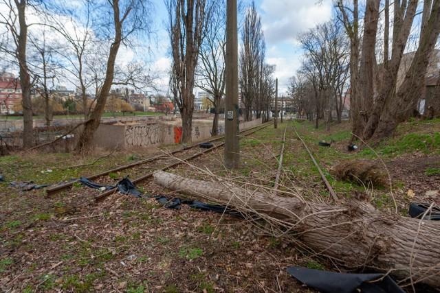 Bydgoszcz zaczęła pozimowe porządki. Na ul. Toruńską - jak widać - ekipy sprzątające jeszcze nie dotarły...