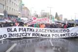 """""""Obronimy polską wieś"""". Wielki protest rolników w Warszawie. Na miejscu była grupa ponad 70 gospodarzy z powiatu pleszewskiego"""