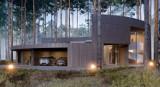 Puszcza Kampinoska. Wyjątkowy dom w lesie pod Warszawą. Wygląda jak wyciosany w pniu