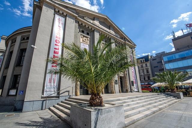 Palmy przed Teatrem Śląskim