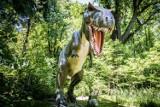 Dinozaury ożyły po 65 mln lat!