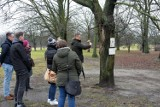 Warszawa wprowadza Kartę Praw Drzew. Ratusz: żadne miejskie drzewo nie zniknie bez wiedzy mieszkańców
