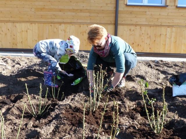 Przez ostatni miesiąc mieszkańcy gminy oraz członkowie Towarzystwa Przyjaciół Lipska ciężko pracowali przy zagospodarowaniu terenu przy Lipskim Ośrodku Lokalnej Aktywności. Zasadzone zostały m.in. róże, lawendy i biało - czerwone tulipany. Ogród już teraz wygląda imponująco, a na wiosnę będzie jeszcze piękniejszy.
