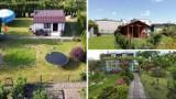 Śląskie: Zastanawiasz się nad zakupem działki rekreacyjnej? Sprawdź oferty najtańszych ogródków działkowych w regionie!