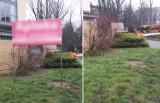 Nielegalne reklamy w Warszawie. Drogowcy likwidują miesięcznie setki miejsc, które szpecą miasto
