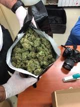 Policjanci przechwycili ponad 4 kg marihuany. Zatrzymano 32-letniego mężczyznę. ZDJĘCIA