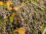 Wszystkich Świętych. Samorządy straciły setki tysięcy złotych po zamknięciu cmentarzy. Sprawdzamy sytuację w Trójmieście