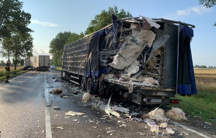 Gm. Miłoradz. Wypadek na drodze krajowej nr 22. W Gnojewie zderzyły się ciężarówki, jedna przewoziła żywe indyki