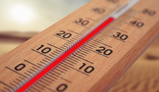 Według prognoz IMGW w piątek zachmurzenie małe i umiarkowane, po południu i wieczorem miejscami duże, przelotne opady deszczu i burze, lokalnie z gradem. Prognozowana wysokość opadów podczas burz do 15 mm. Temperatura maksymalna od 26°C do 28°C. Wiatr słaby i umiarkowany, wschodni. Podczas burz porywy do 65 km/h.   Przejdź do kolejnego zdjęcia --->
