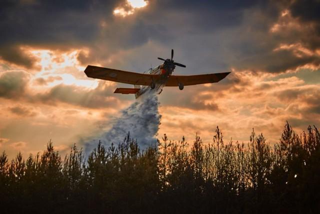 W akcji gaśniczej brały m.in. udział dwa samoloty gaśnicze Dromader