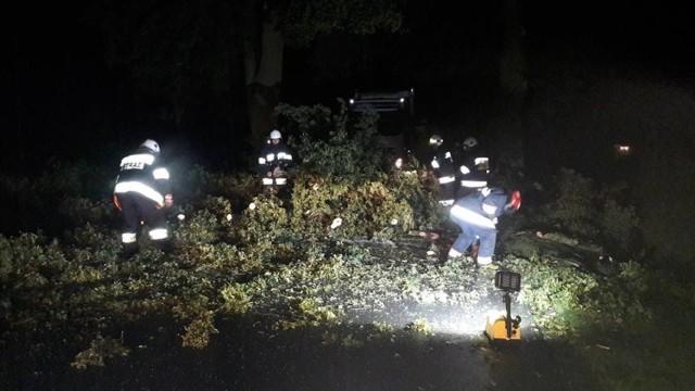 Pracowity wieczór i noc mieli wczoraj strażacy. Usuwali skutki burz, deszczów i wiatrów w całym powiecie. Wyjeżdżali 26 razy.  Zaczęło się w Kiełpiu, gdzie oberwany konar drzewa zwisał nad linia energetyczną.  Tragicznie mogła skończyć się podróż dla mężczyzny, który jechał przez Starogród swoim fiatem stilo. Na jego jadące drogą powiatową auto zwalił się konar drzewa. Spadł na przód samochodu, a kierowca uniknął obrażeń i sam opuścił pojazd. Ruch został zablokowany. Strażacy piła usunęli konar. Straty oszacowano na 3 tys. złotych.  Do budynku wielorodzinnego w Chełmnie, przy ul. Chociszewskiego wezwano strażaków do wypompowania wody z trzech mieszkań. Zostały zalane po tym, jak wybiła woda z kanalizacji. Nie było możliwości wypompowania jej pompą, ponieważ była zbyt niska i zrobili to wiadrami. Na  miejsce dotarli również pracownicy Zakładu Wodociągów i Kanalizacji w Chełmnie, którzy oczyścili studzienki kanalizacyjne. Leżące na drogach drzewa strażacy usuwali w Płutowie, Klamrach, Gołotach, Kałdusie, Jeleńcu, Grzybnie, Trzebczu Szlacheckim, Kijewie Królewskim, w Chełmnie przy ul. Łunawskiej, jak również w  Unisławiu przy ul. Żwirki i Wigury. Powalonych drzewa trzeba było ponadto pozbyć się z jezdni w Starogrodzie Dolnym, Kałdusie, Kijewie Królewskim, Grubnie, Wierzbowie, a także w Chełmnie przy ulicach: Osonowskiej, Nad  Browiną, Dworcowej oraz dwukrotnie przy ul. Jastrzębskiego. Z kolei oberwany konar zwisający nad ulicami wymagały interwencji strażackiej w Chełmnie przy ul. Jastrzębskiego. W Chełmnie przy ulicach: Dworcowej i Łunawskiej drzewo groźnie pochyliło się nad linią energetyczną.  Poza tym, na ul. Osnowską w Chełmnie spadła linia telefoniczna.