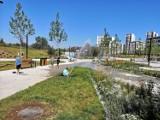 Park Czyżyny oficjalnie dopuszczony do użytku. Pierwszy i ostatni taki park w Krakowie