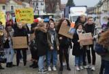 Młodzieżowy Strajk Klimatyczny zamiast Black Friday. Młodzi uciekli ze szkoły by strajkować dla Ziemi (ZDJĘCIA)