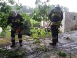 Strażacy z Chełmna i powiatu walczyli ze skutkami burzy i wiatru [zdjęcia]
