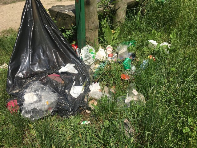 Spacery po zabrzańskich parkach w towarzystwie śmieci. Zobacz kolejne zdjęcia. Przesuwaj zdjęcia w prawo - naciśnij strzałkę lub przycisk NASTĘPNE