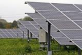 W Bydgoszczy, w Fordonie powstają potężne farmy fotowoltaiczne - pola uprawne zmienia się w pola paneli