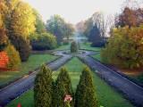 Park pałacowy w Wysocku