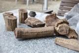 Szamotuły. Przy ulicy Zamkowej dokonano odkrycia archeologicznego! [ZDJĘCIA]