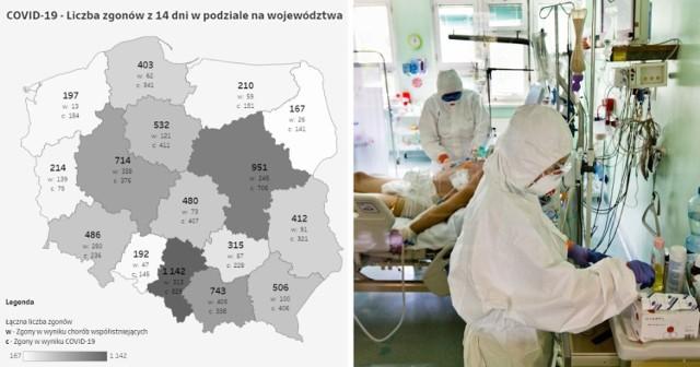 Ile osób zmarło w poszczególnych miastach i powiatach? Gdzie w Śląskiem śmiertelność na COVID-19 jest najwyższa? Kliknij w galerię i sprawdź najnowsze dane >>>