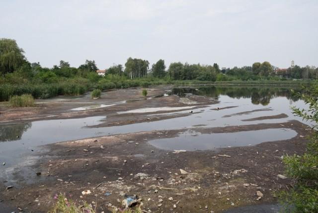 Staw Kalina jest zanieczyszczany m.in. fenolami