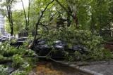 Burza przeszła przez Warszawę. Połamane drzewa, zniszczone samochody, pozalewane garaże i piwnice