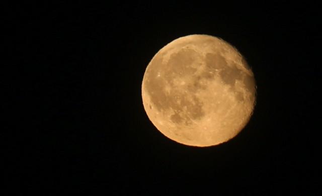 Skąd nazwa Pełnia Żniwiarzy? Dzięki księżycowej pełni, jasne noce pozwalały kiedyś na zbieranie plonów także po zachodzie słońca. Kolejna taka pełnia za 40 lat.  Zdjęcie: Karolina Misztal
