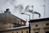 Torzym obok Sulęcina zadba o środowisko. Mieszkańcy mają szansę na dotację na wymianę pieców