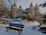 Zobacz, jak pięknie wygląda gołuchowski park w zimowej odsłonie ZDJĘCIA