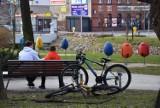 Wiosna w Rybniku! Astronomiczna wiosna już jest, czy widać jej oznaki w mieście?  ZDJĘCIA