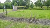 Zniszczone trawniki w wyremontowanym Parku Chrobrego w Gliwicach po Runmageddonie. Jest odpowiedź organizatora