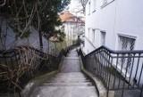 Warszawa. Oto jedna z najurokliwszych uliczek w stolicy. Zejdźcie z utartych szlaków i wybierzcie się na spacer na Profesorską